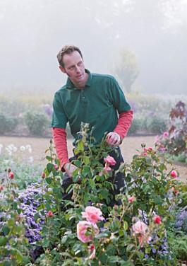 RAGLEY HALL GARDEN, WARWICKSHIRE: HEAD GARDENER ROSS BARBOUR IN THE ROSE GARDEN